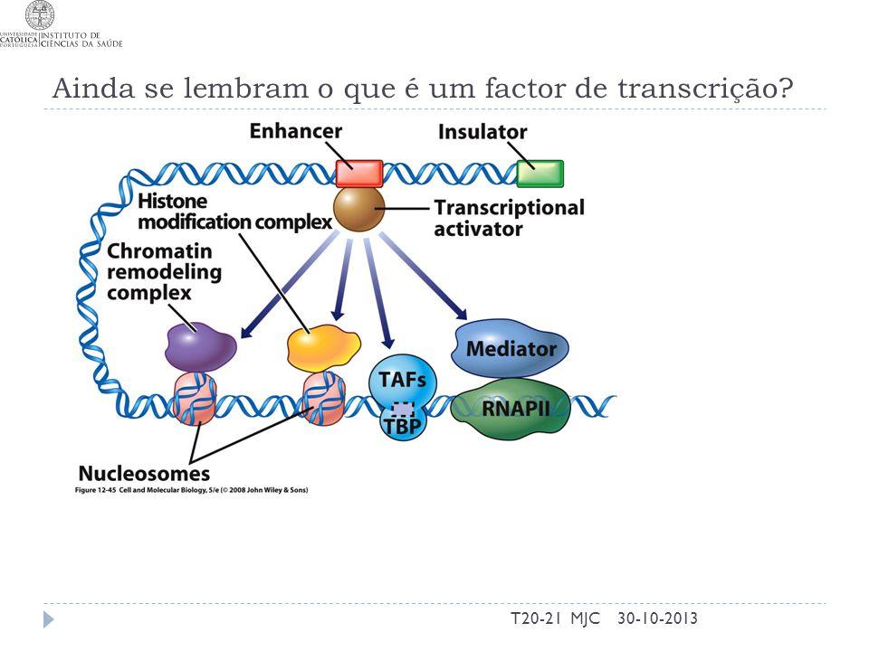 Ainda se lembram o que é um factor de transcrição? 30-10-2013T20-21 MJC