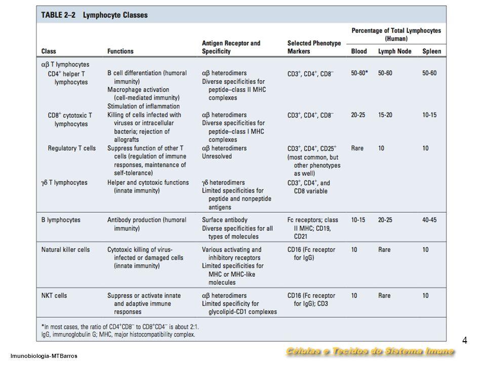 DEPARTAMENTO DE CIÊNCIAS DA SAÚDE - UCP Imunobiologia- MTBarros 4