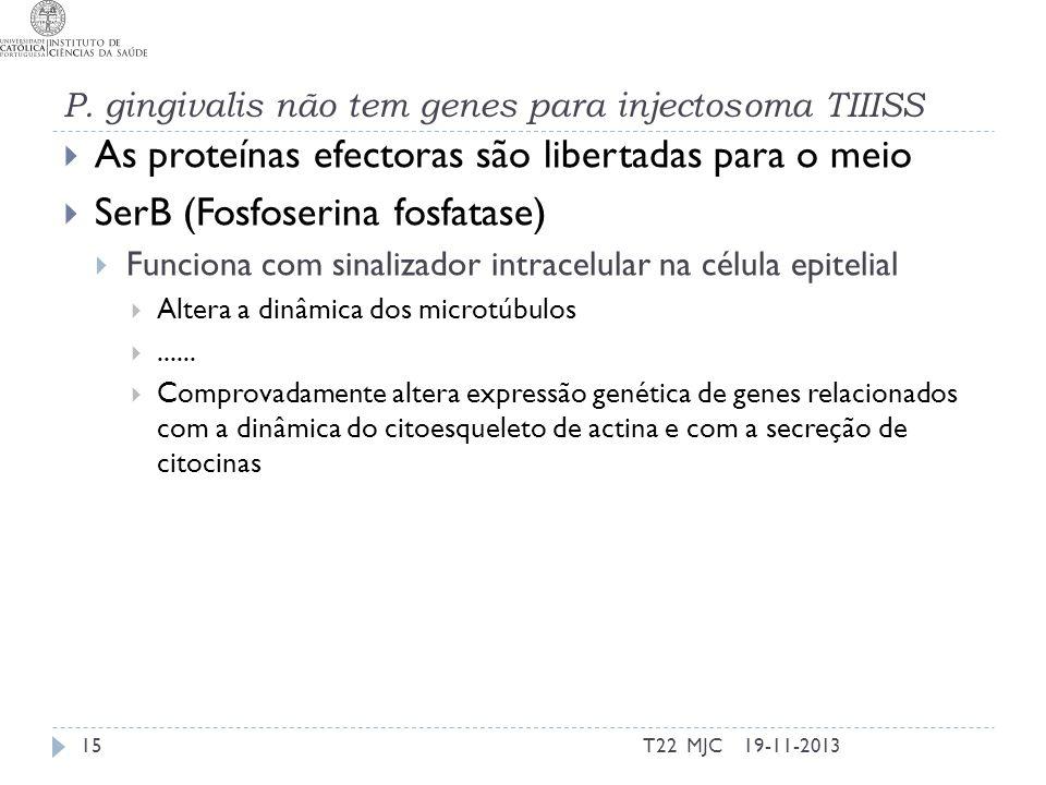 P. gingivalis não tem genes para injectosoma TIIISS As proteínas efectoras são libertadas para o meio SerB (Fosfoserina fosfatase) Funciona com sinali