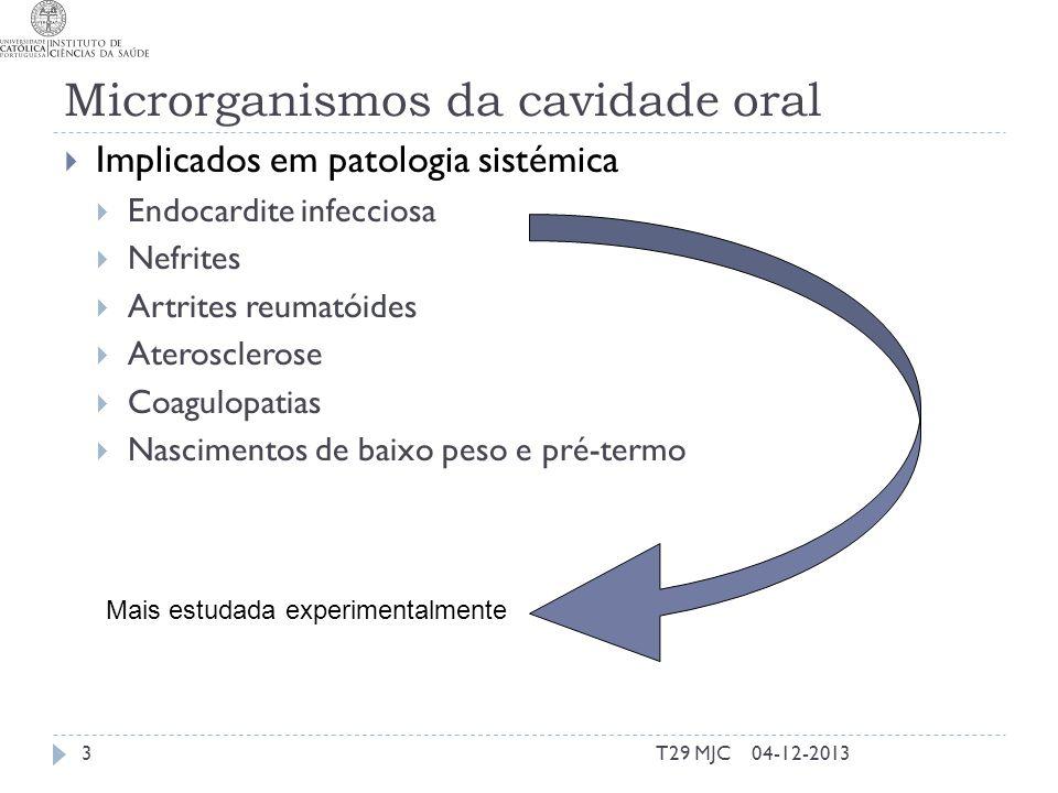 Microrganismos da cavidade oral Implicados em patologia sistémica Endocardite infecciosa Nefrites Artrites reumatóides Aterosclerose Coagulopatias Nascimentos de baixo peso e pré-termo Mais estudada experimentalmente 04-12-20133T29 MJC
