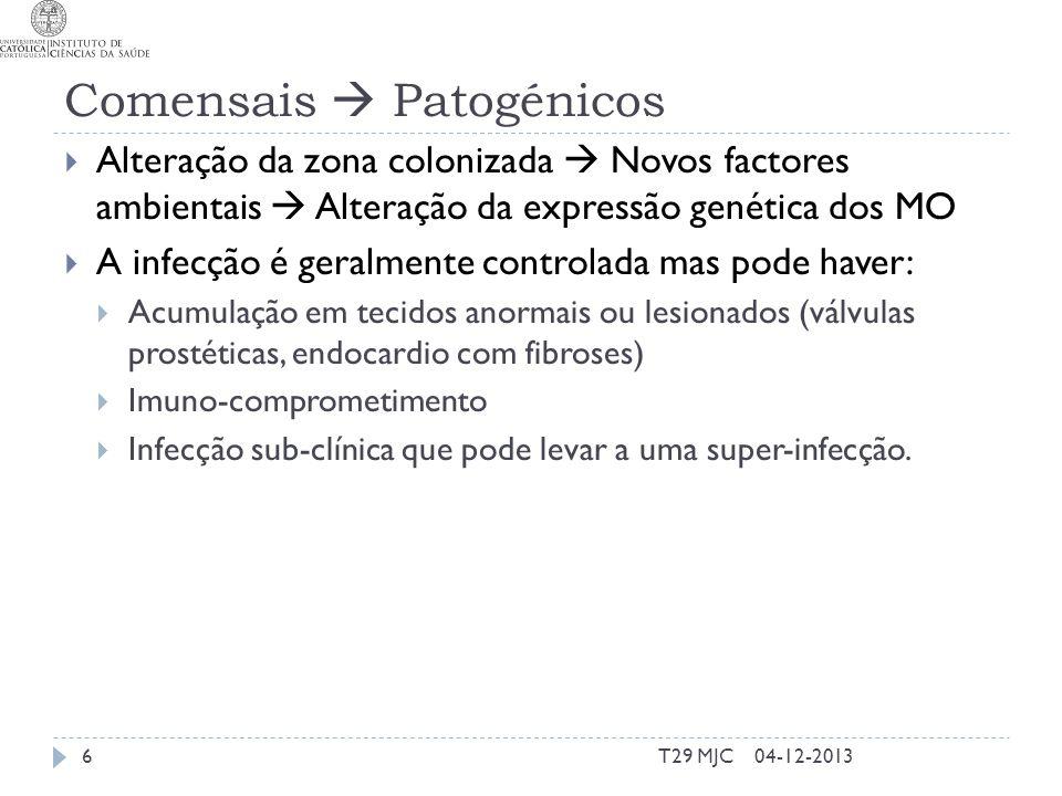 Comensais Patogénicos Alteração da zona colonizada Novos factores ambientais Alteração da expressão genética dos MO A infecção é geralmente controlada mas pode haver: Acumulação em tecidos anormais ou lesionados (válvulas prostéticas, endocardio com fibroses) Imuno-comprometimento Infecção sub-clínica que pode levar a uma super-infecção.