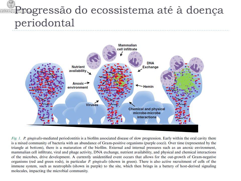 Progressão do ecossistema até à doença periodontal 26-11-2013T25 MJC13