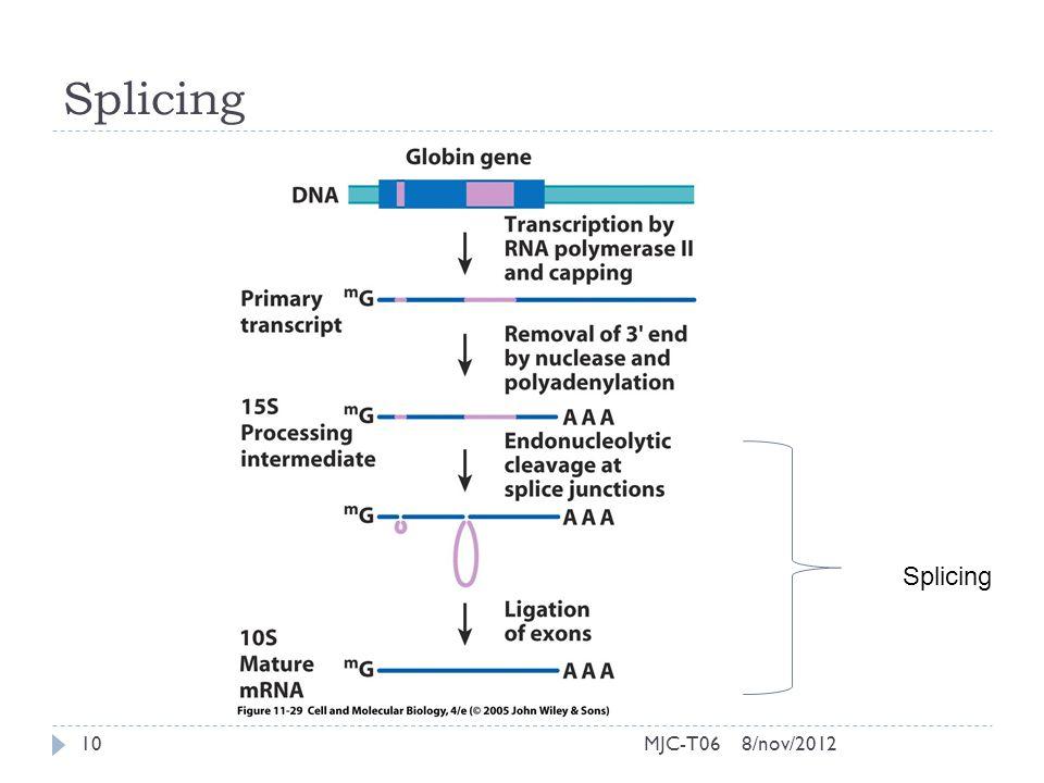 Splicing 8/nov/201210MJC-T06 Splicing