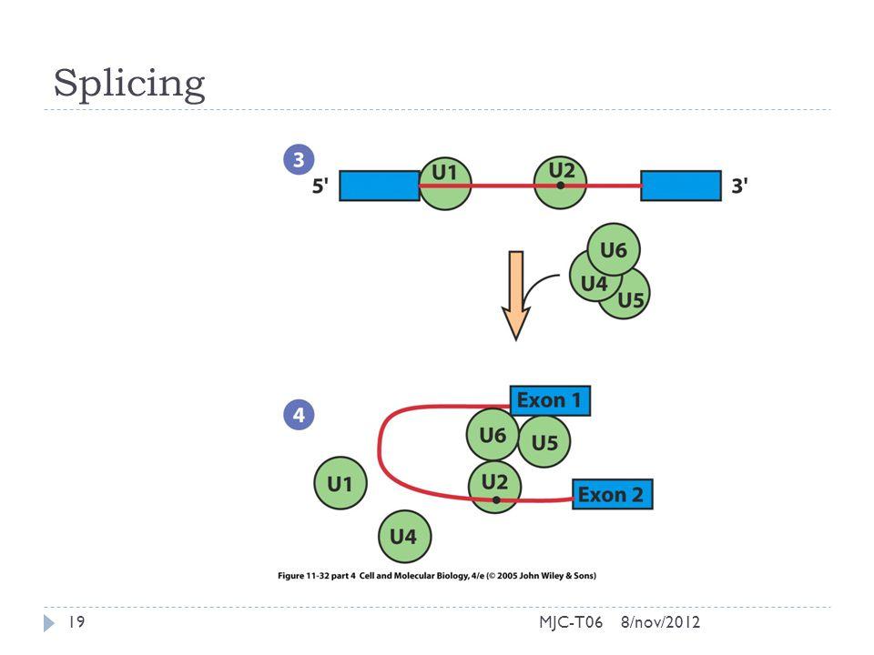 Splicing 8/nov/201219MJC-T06