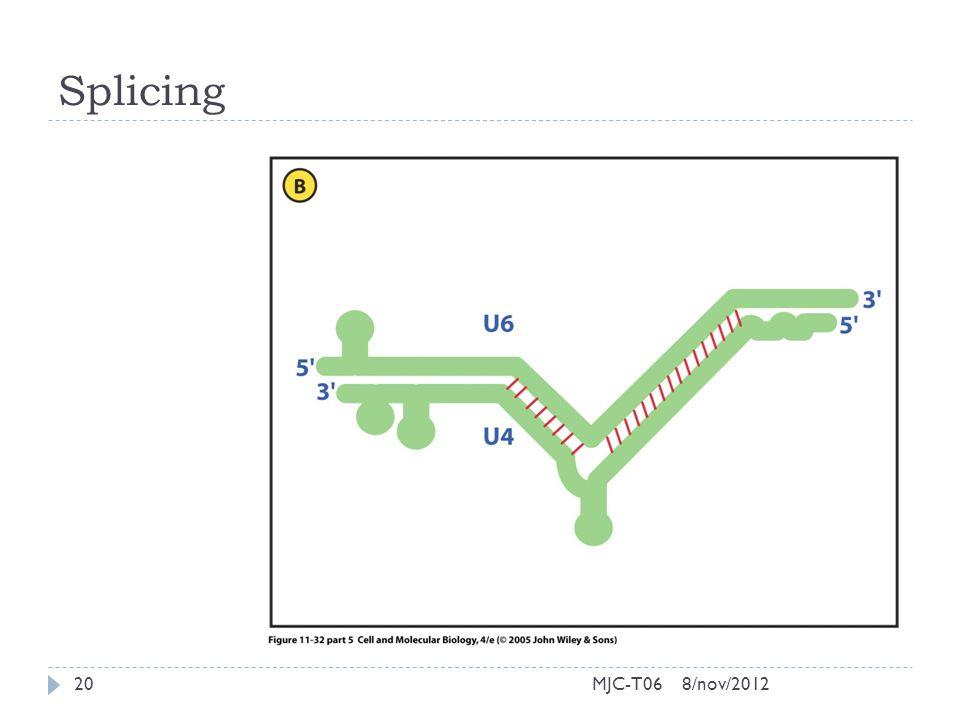 Splicing 8/nov/201220MJC-T06