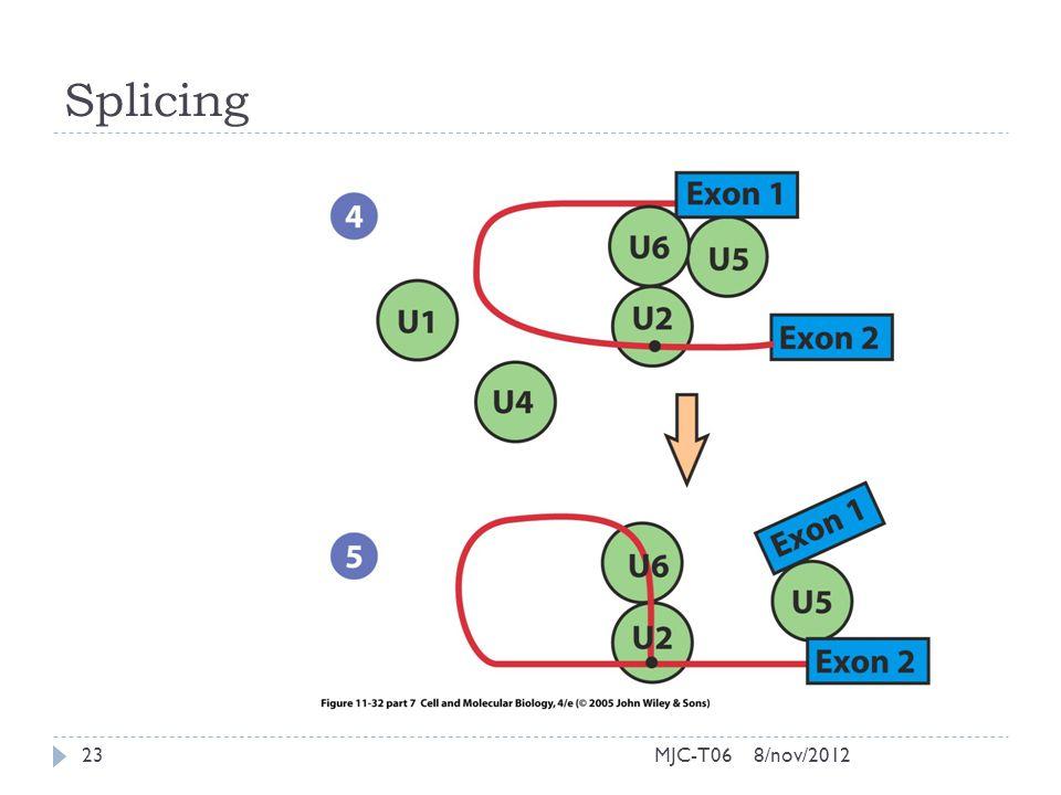 Splicing 8/nov/201223MJC-T06