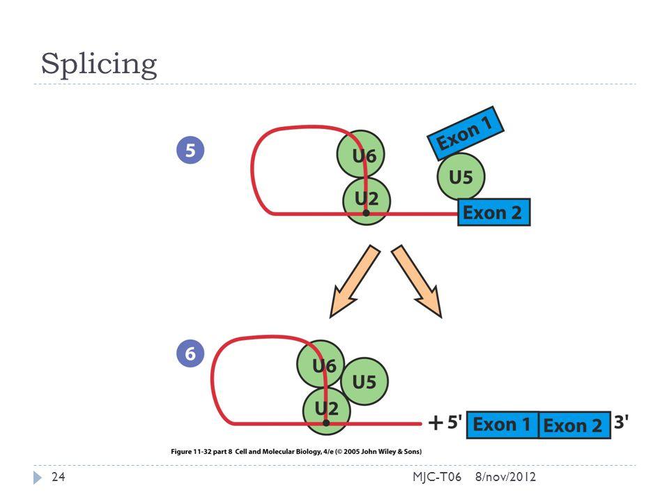 Splicing 8/nov/201224MJC-T06