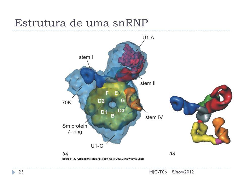 Estrutura de uma snRNP 8/nov/201225MJC-T06