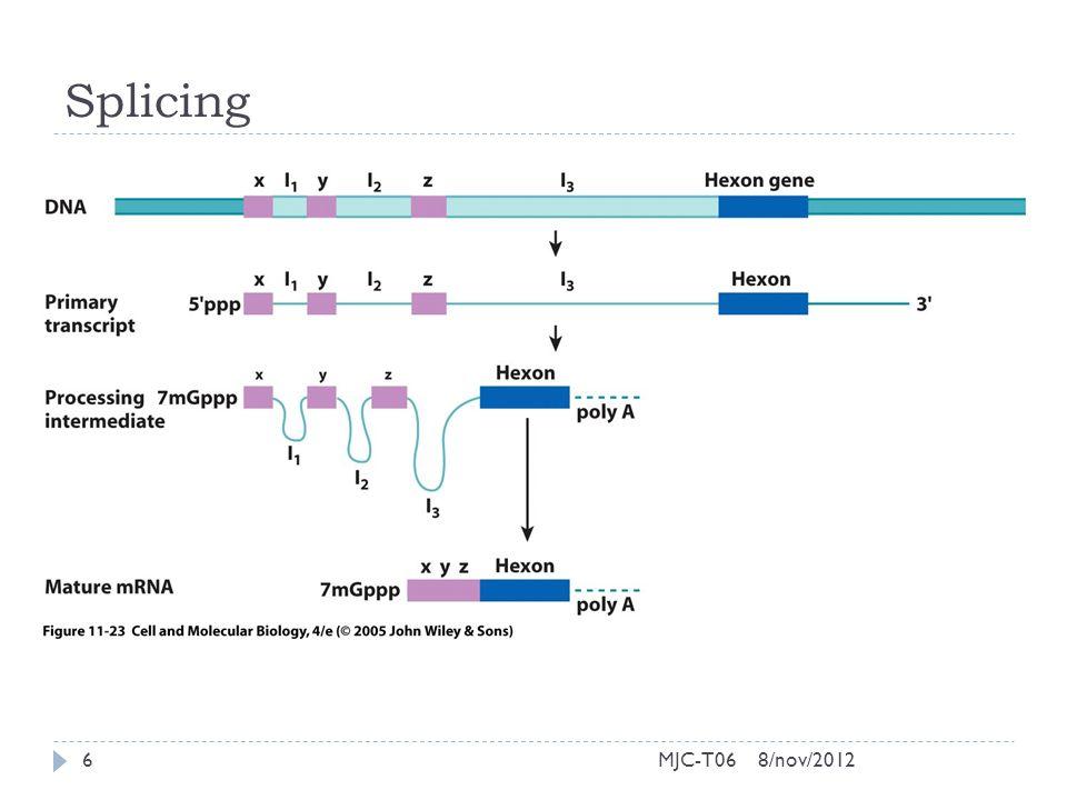 Splicing 8/nov/20126MJC-T06