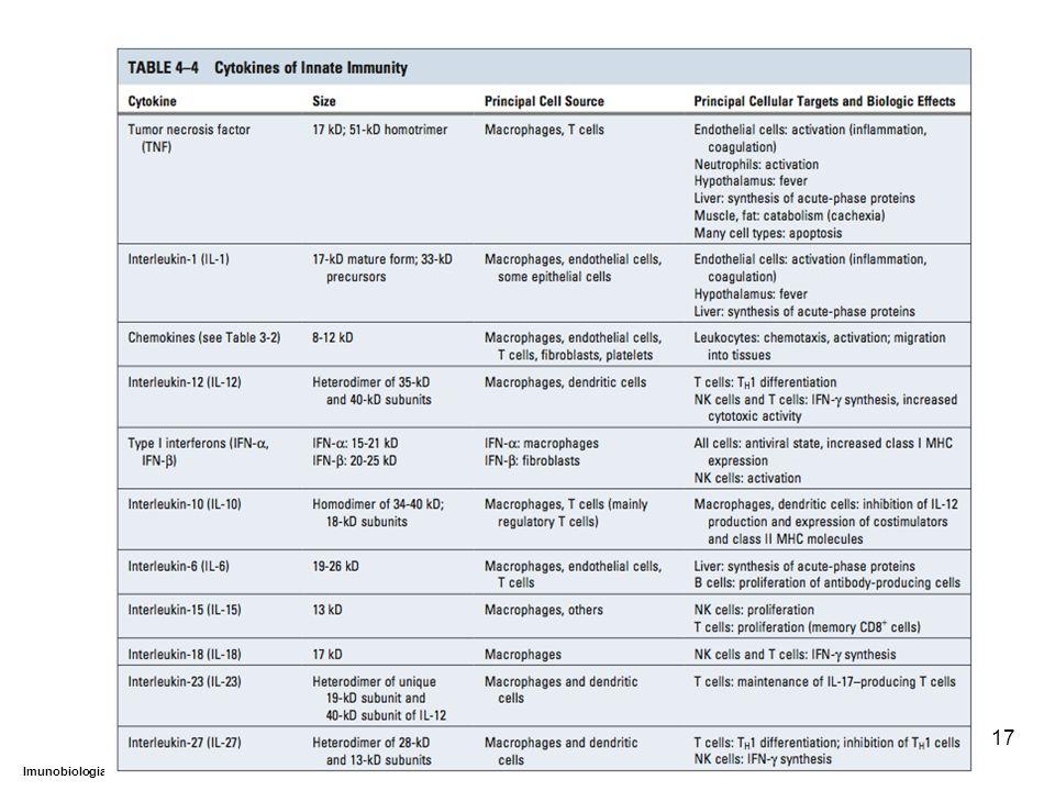 DEPARTAMENTO DE CIÊNCIAS DA SAÚDE - UCP Imunobiologia - MTBarros 17