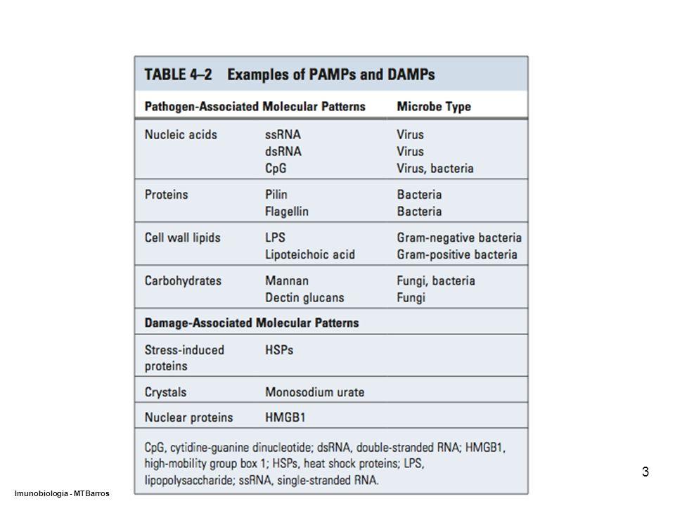 DEPARTAMENTO DE CIÊNCIAS DA SAÚDE - UCP Imunobiologia - MTBarros 3