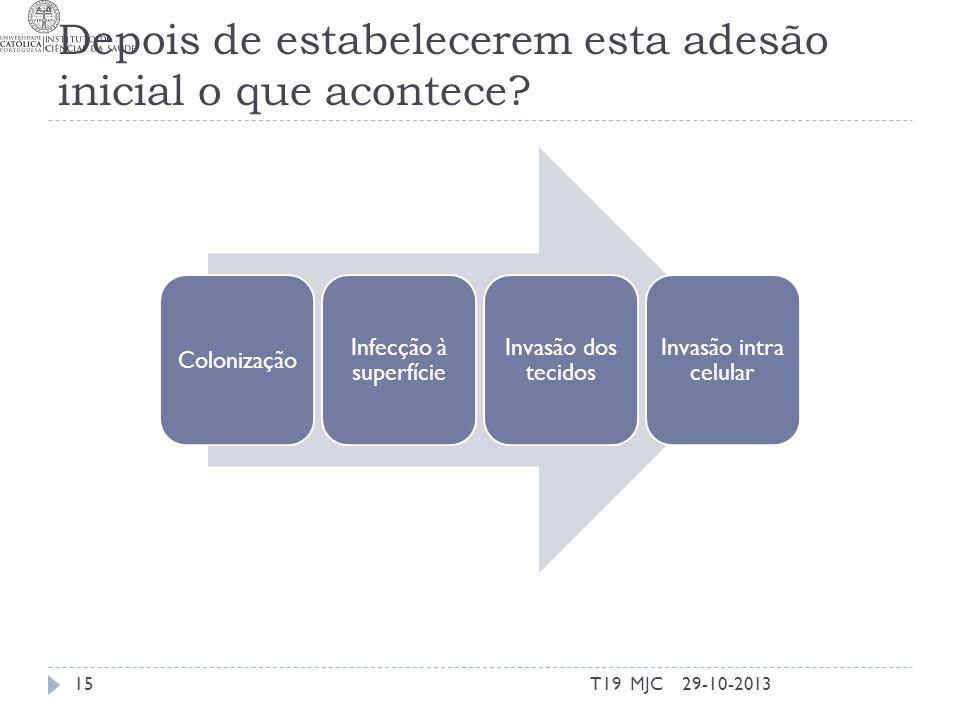 Depois de estabelecerem esta adesão inicial o que acontece? 29-10-2013T19 MJC15 Colonização Infecção à superfície Invasão dos tecidos Invasão intra ce