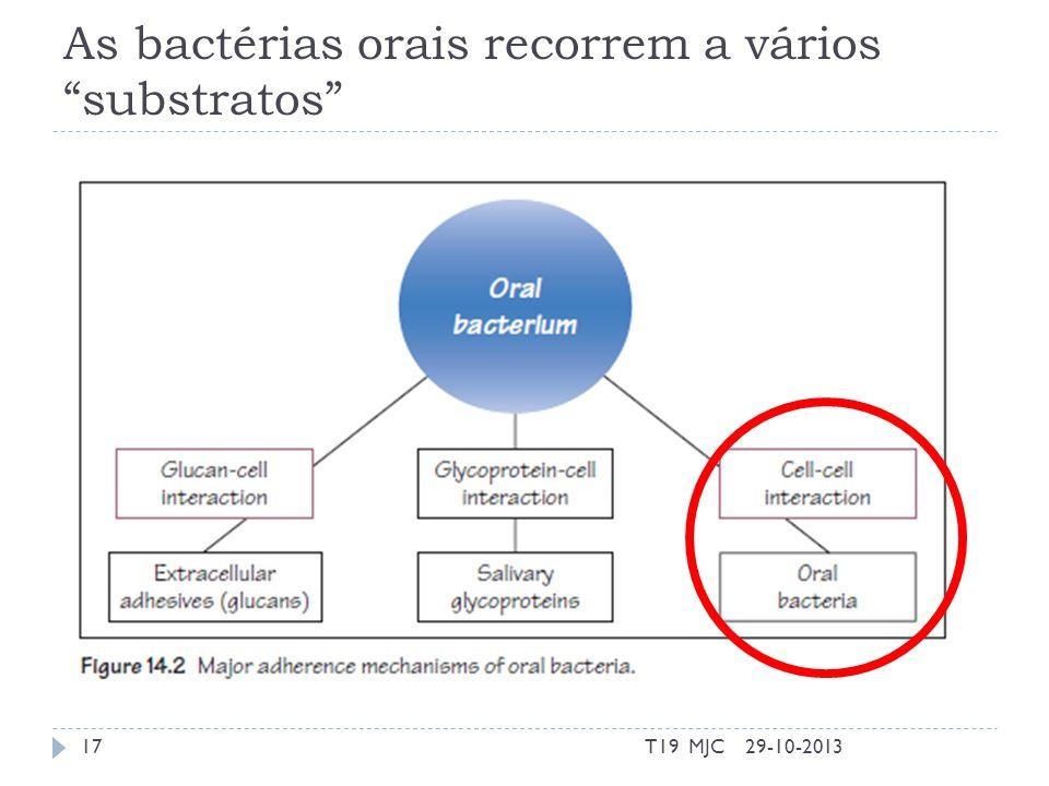 As bactérias orais recorrem a vários substratos 29-10-2013T19 MJC17