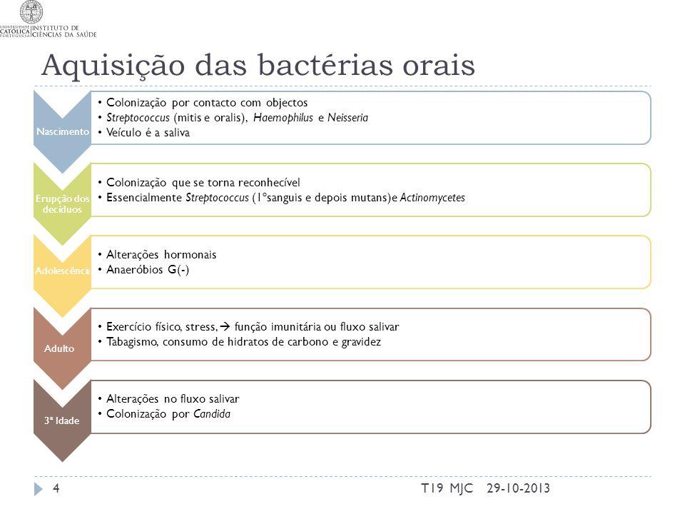 Aquisição das bactérias orais Nascimento Colonização por contacto com objectos Streptococcus (mitis e oralis), Haemophilus e Neisseria Veículo é a sal