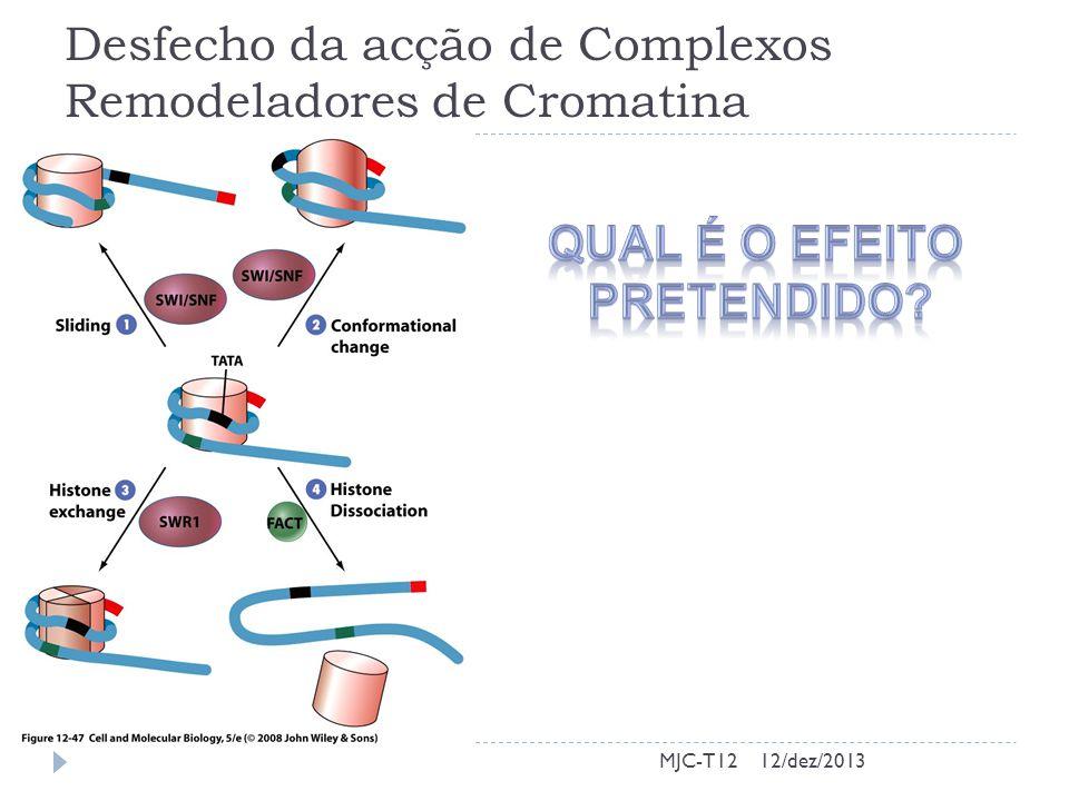 Desfecho da acção de Complexos Remodeladores de Cromatina MJC-T1212/dez/2013