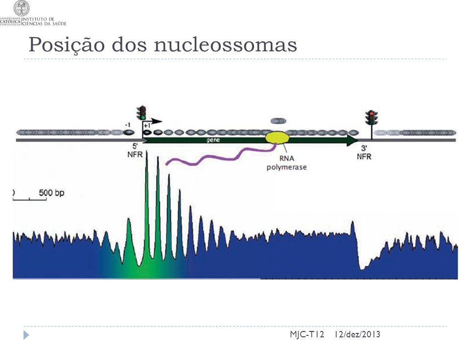 Posição dos nucleossomas MJC-T1212/dez/2013
