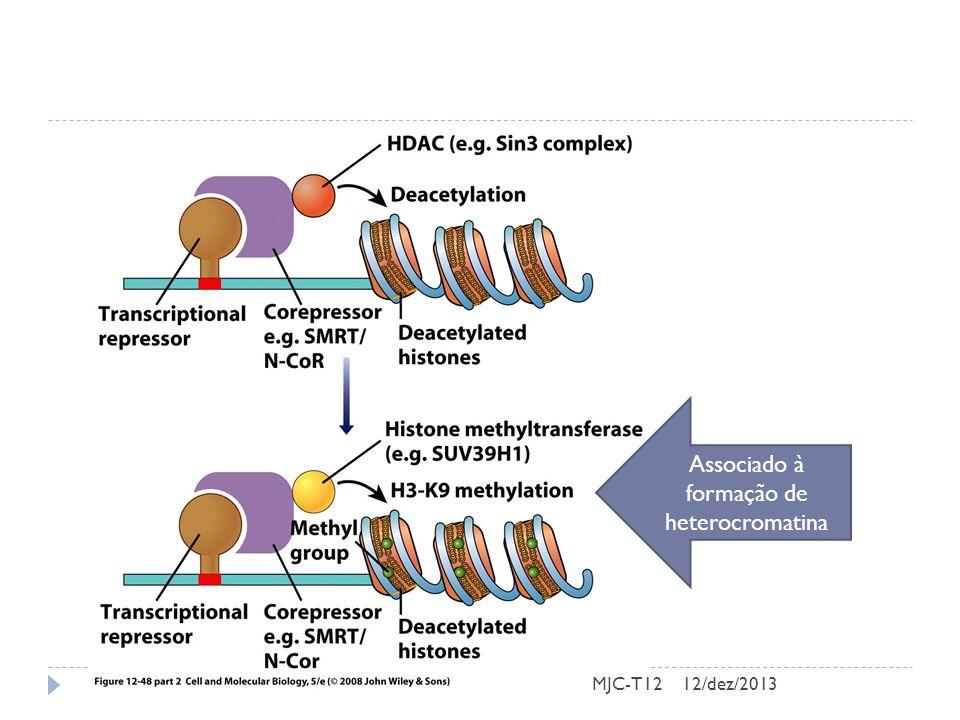 MJC-T12 Associado à formação de heterocromatina 12/dez/2013