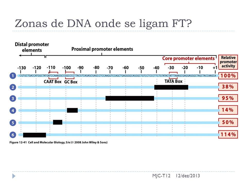 Zonas de DNA onde se ligam FT? MJC-T1212/dez/2013