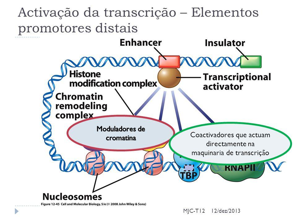Activação da transcrição – Elementos promotores distais MJC-T12 Coactivadores que actuam directamente na maquinaria de transcrição 12/dez/2013