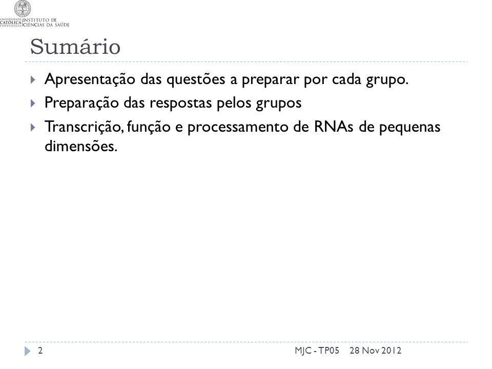 Sumário 28 Nov 2012MJC - TP052 Apresentação das questões a preparar por cada grupo. Preparação das respostas pelos grupos Transcrição, função e proces