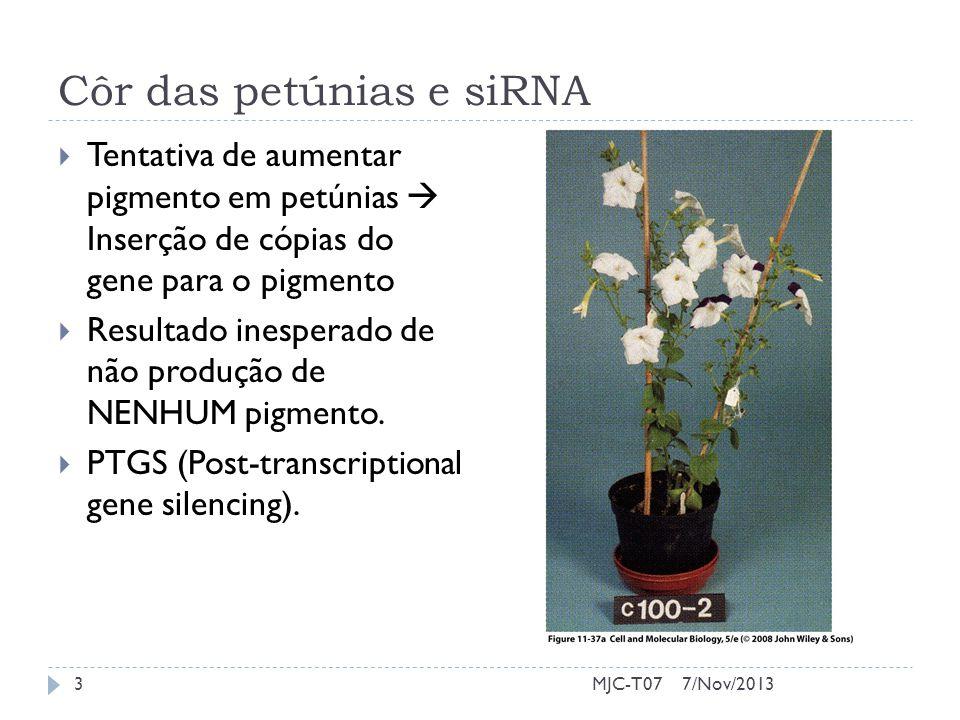 Côr das petúnias e siRNA Tentativa de aumentar pigmento em petúnias Inserção de cópias do gene para o pigmento Resultado inesperado de não produção de NENHUM pigmento.