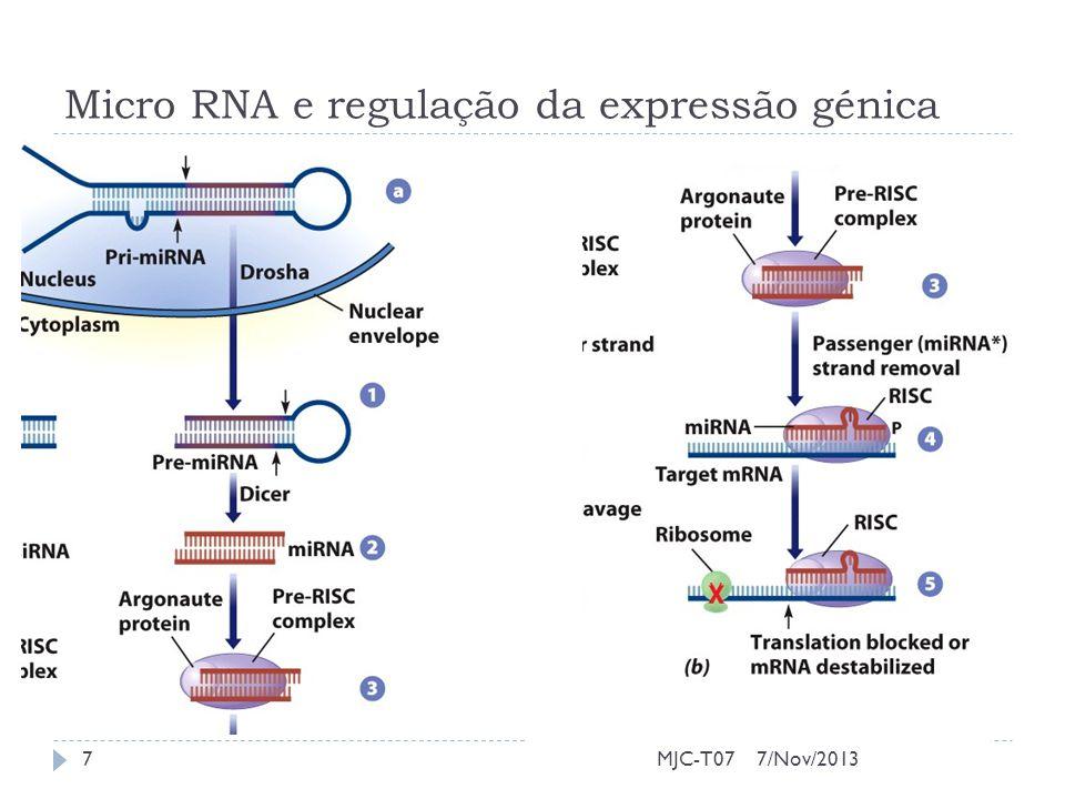 Micro RNA e regulação da expressão génica 7/Nov/20137MJC-T07