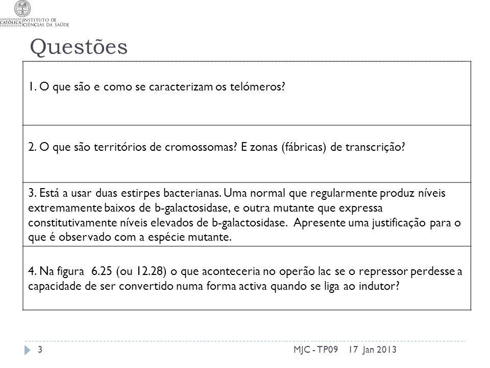 Questões 17 Jan 2013MJC - TP093 1. O que são e como se caracterizam os telómeros.