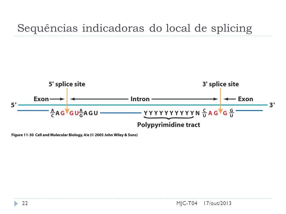 Sequências indicadoras do local de splicing 17/out/201322MJC-T04