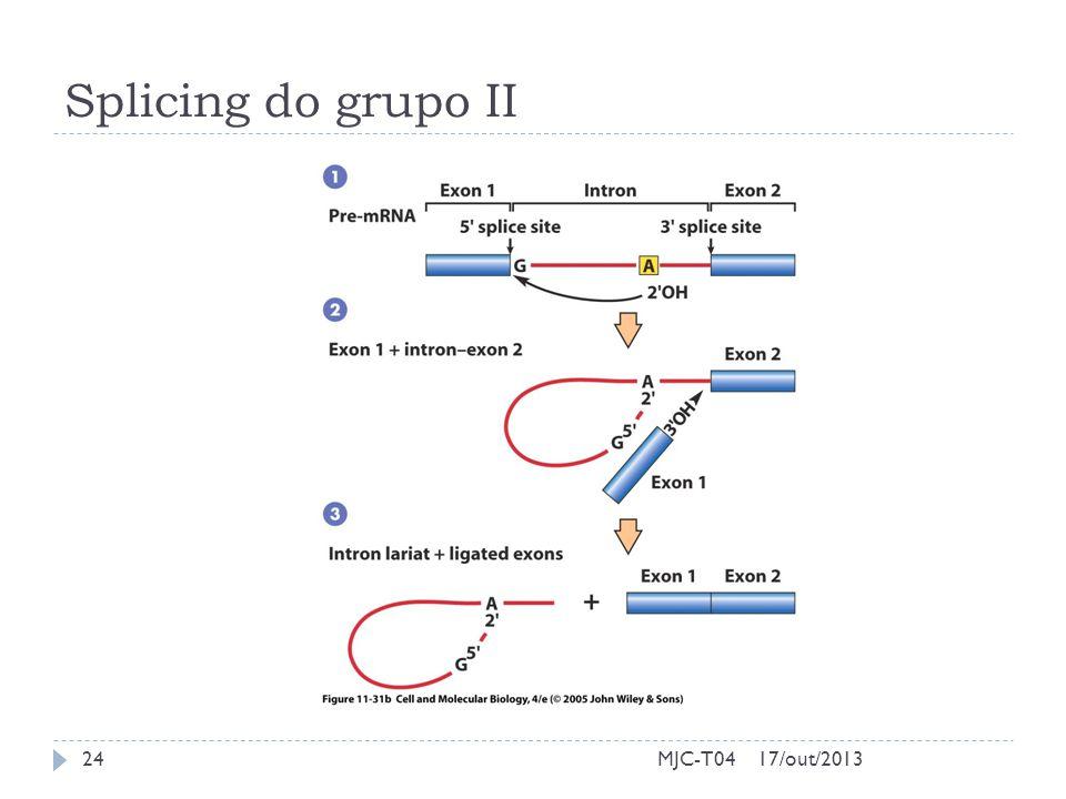Splicing do grupo II 17/out/201324MJC-T04