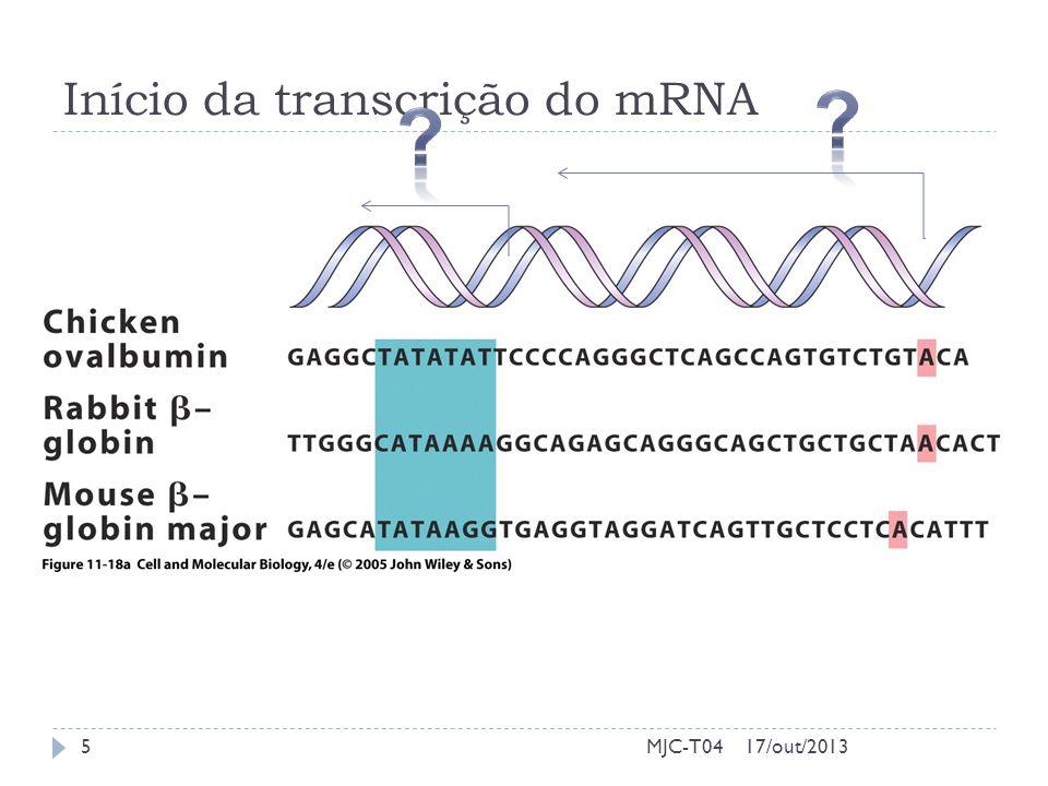 Início da transcrição do mRNA 17/out/20135MJC-T04