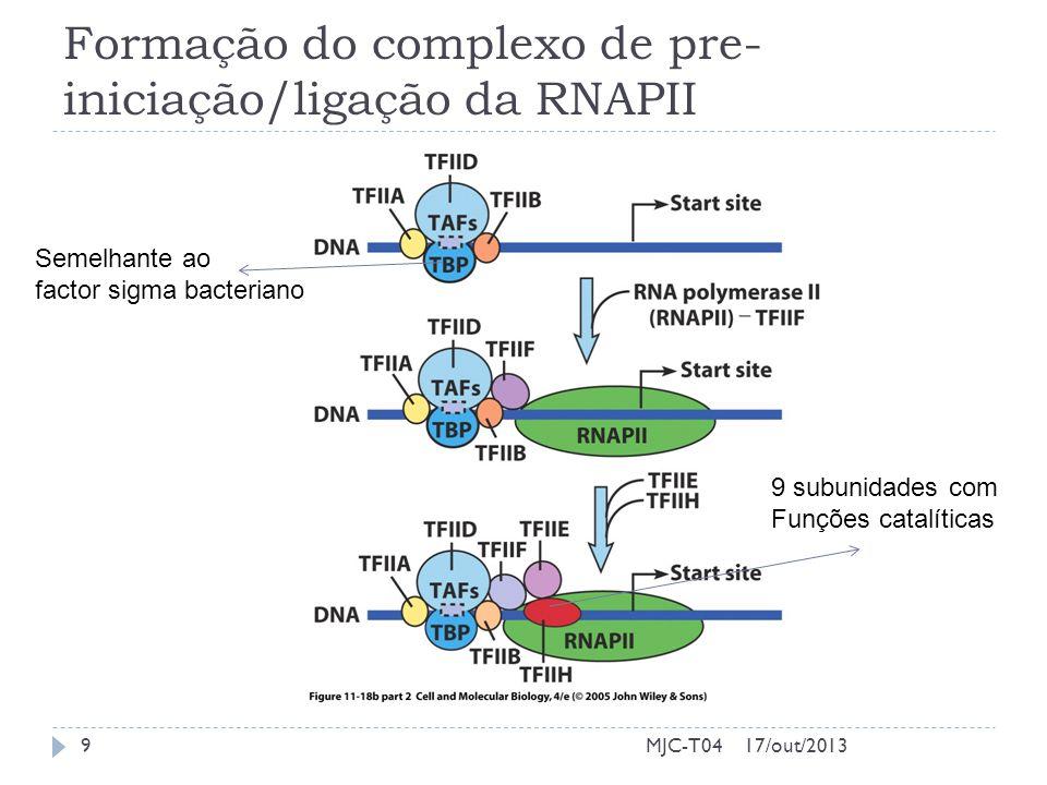 Formação do complexo de pre- iniciação/ligação da RNAPII 17/out/20139MJC-T04 Semelhante ao factor sigma bacteriano 9 subunidades com Funções catalíticas