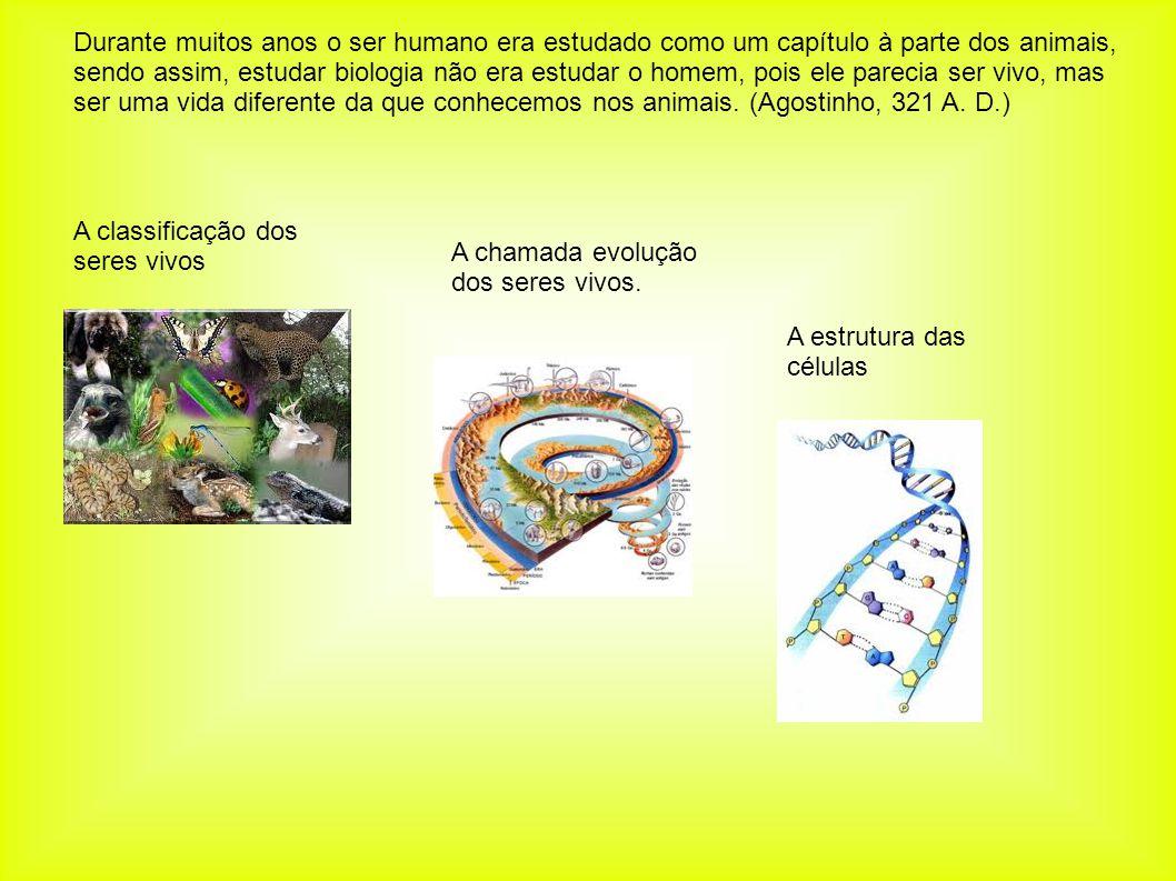 A classificação dos seres vivos A chamada evolução dos seres vivos. A estrutura das células Durante muitos anos o ser humano era estudado como um capí