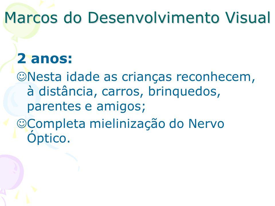 Marcos do Desenvolvimento Visual 2 anos: Nesta idade as crianças reconhecem, à distância, carros, brinquedos, parentes e amigos; Completa mielinização do Nervo Óptico.