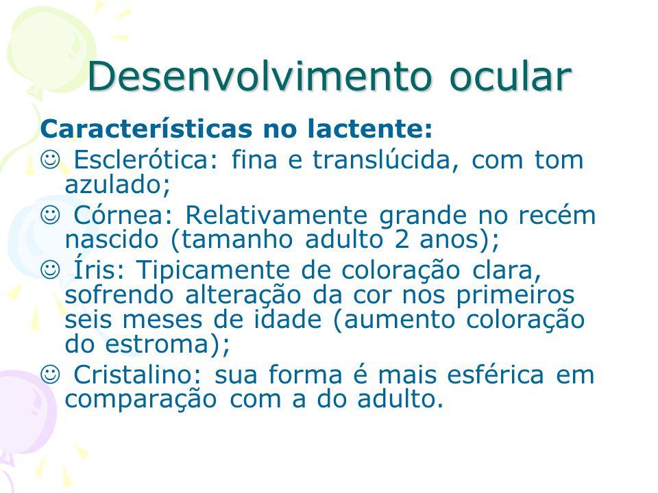 Desenvolvimento ocular O recém-nascido possui principalmente visão periférica, pois a mácula não está totalmente desenvolvida.