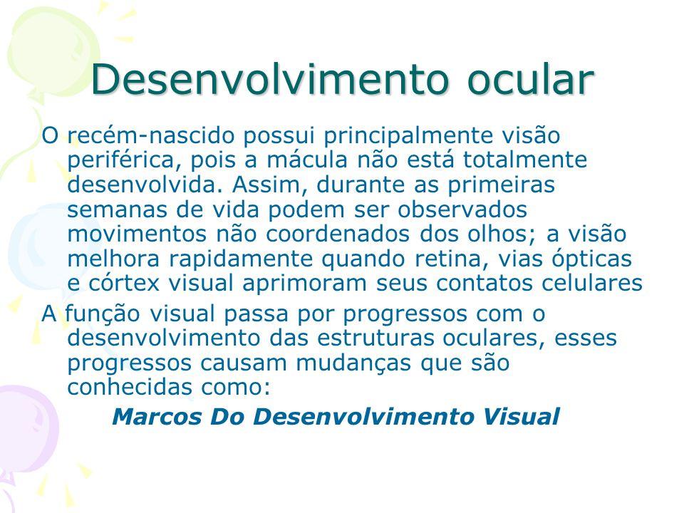 EXAMES OFTALMOLÓGICOS De acordo com Waldo E.