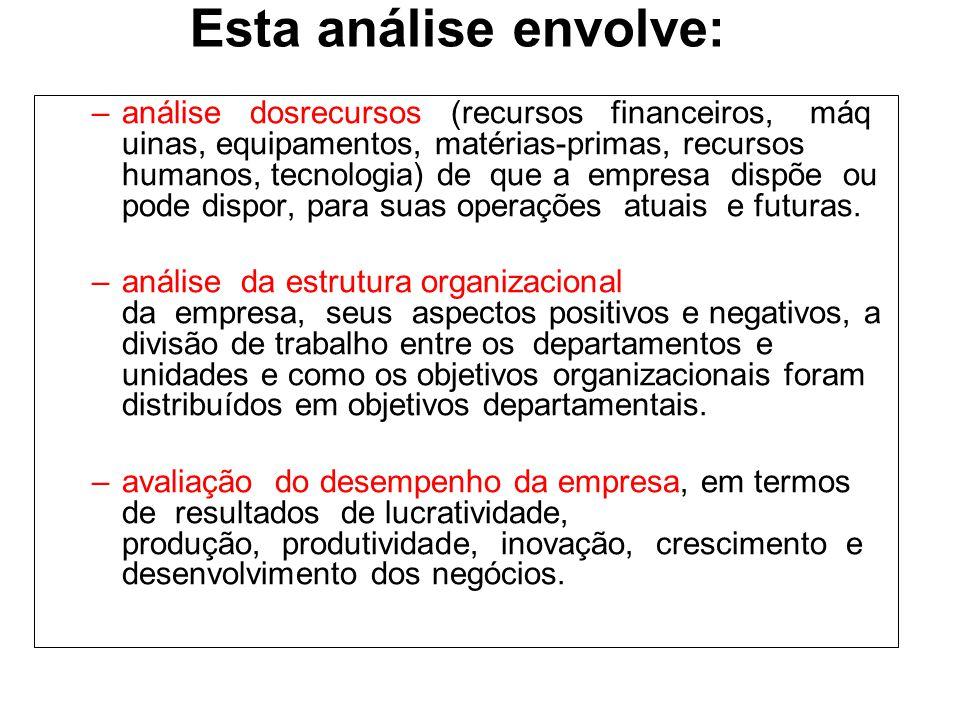 Esta análise envolve: –análise dosrecursos (recursos financeiros, máq uinas, equipamentos, matérias-primas, recursos humanos, tecnologia) de que a emp
