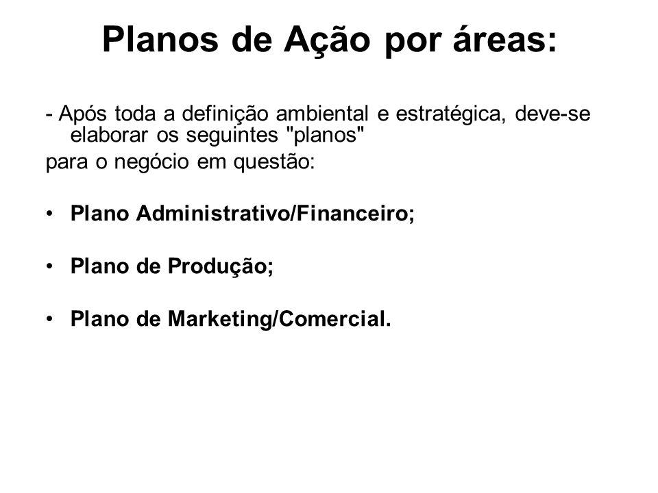 Planos de Ação por áreas: - Após toda a definição ambiental e estratégica, deve-se elaborar os seguintes