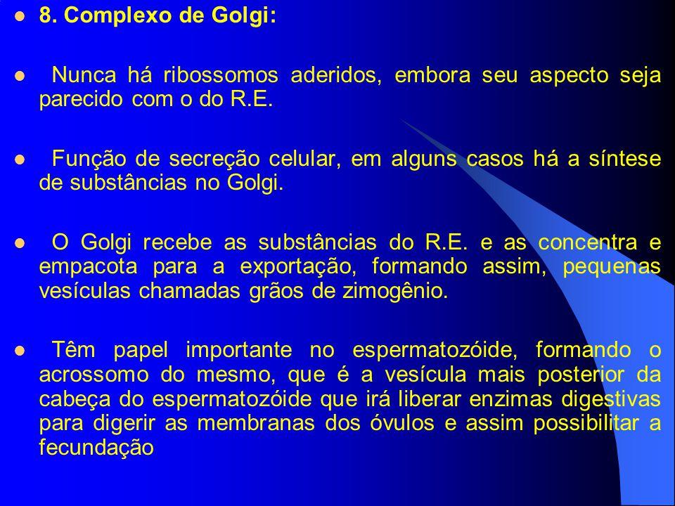 8. Complexo de Golgi: Nunca há ribossomos aderidos, embora seu aspecto seja parecido com o do R.E. Função de secreção celular, em alguns casos há a sí
