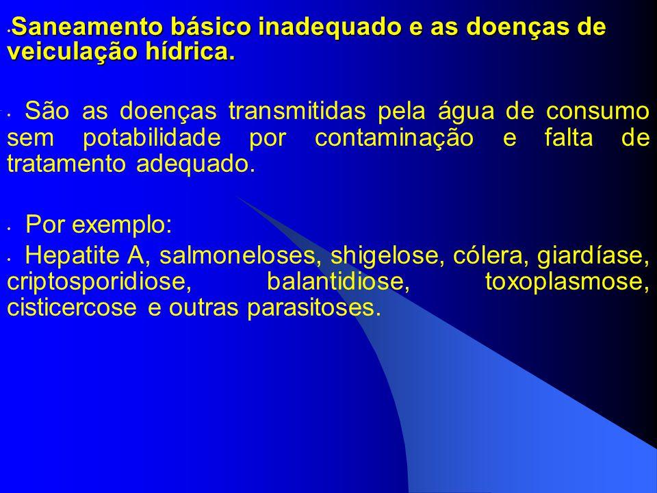 Saneamento básico inadequado e as doenças de veiculação hídrica. Saneamento básico inadequado e as doenças de veiculação hídrica. São as doenças trans