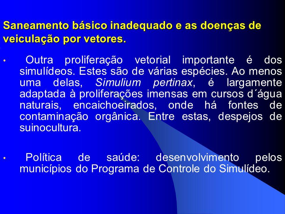 Saneamento básico inadequado e as doenças de veiculação por vetores. Outra proliferação vetorial importante é dos simulídeos. Estes são de várias espé