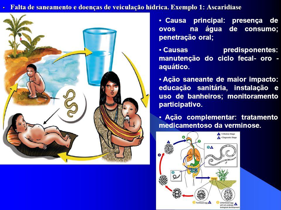 Falta de saneamento e doenças de veiculação hídrica. Exemplo 1: Ascaridíase Falta de saneamento e doenças de veiculação hídrica. Exemplo 1: Ascaridías
