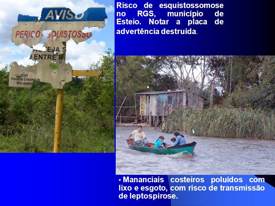 Risco de esquistossomose no RGS, município de Esteio. Notar a placa de advertência destruída. Mananciais costeiros poluídos com lixo e esgoto, com ris