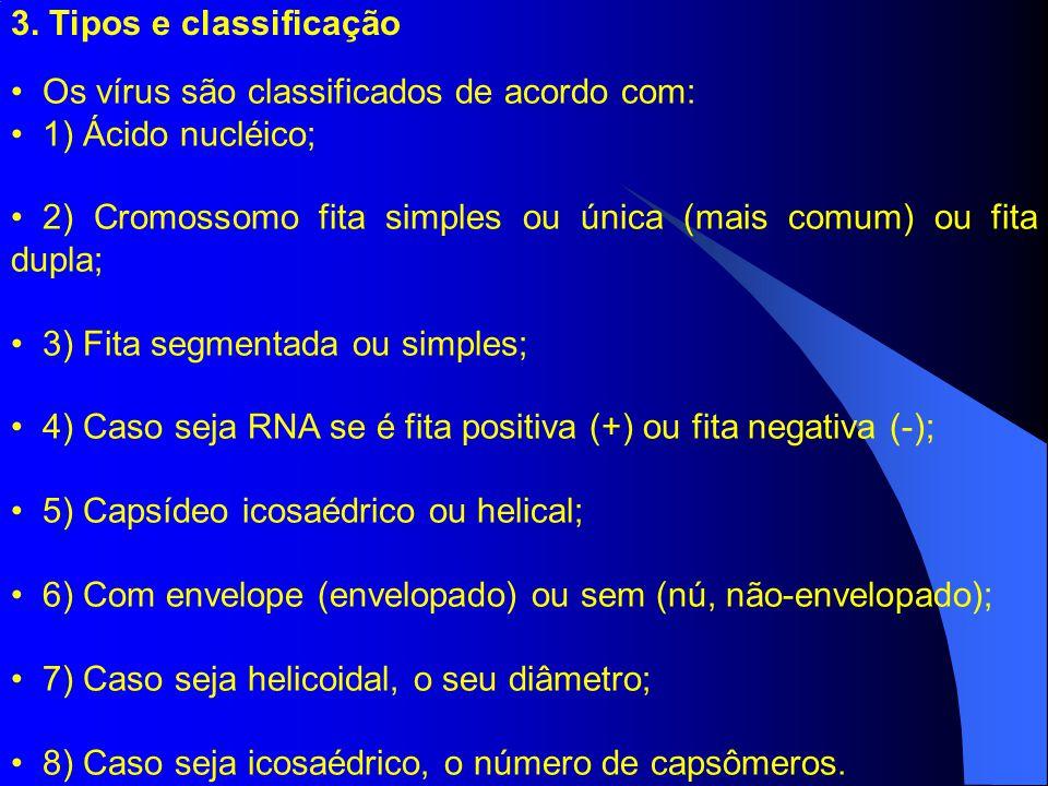 3. Tipos e classificação Os vírus são classificados de acordo com: 1) Ácido nucléico; 2) Cromossomo fita simples ou única (mais comum) ou fita dupla;