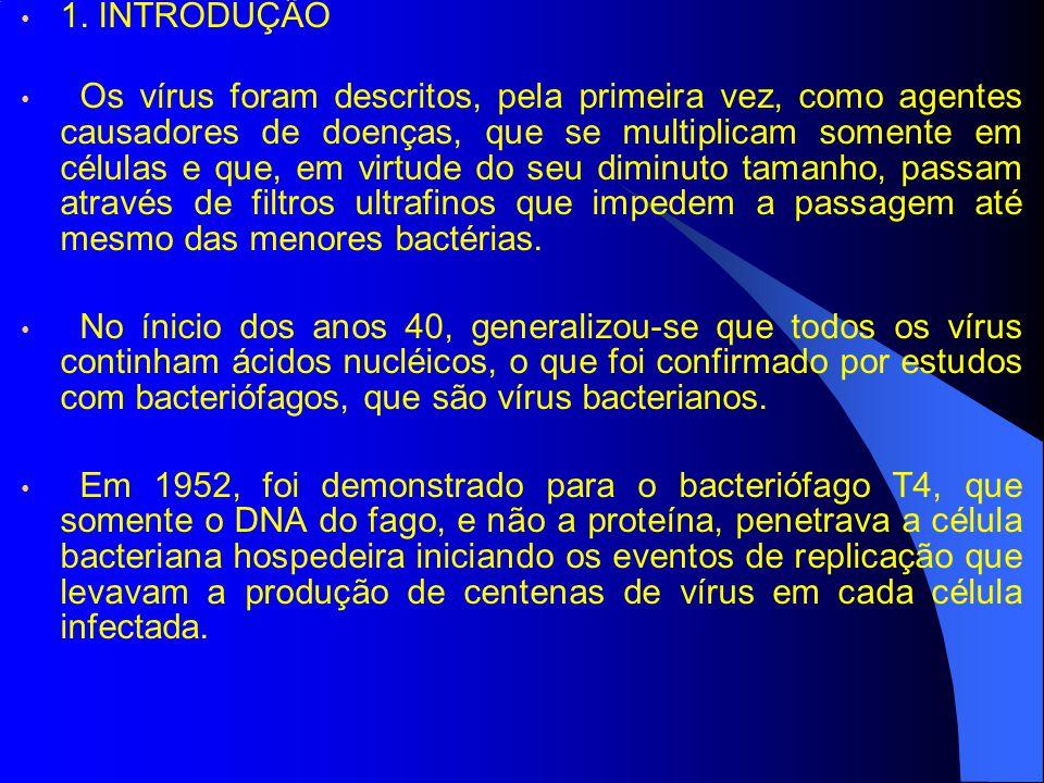 1. INTRODUÇÃO Os vírus foram descritos, pela primeira vez, como agentes causadores de doenças, que se multiplicam somente em células e que, em virtude