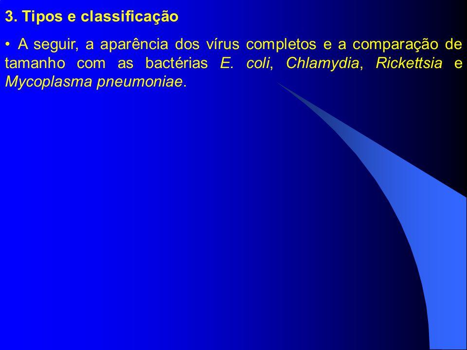 3. Tipos e classificação A seguir, a aparência dos vírus completos e a comparação de tamanho com as bactérias E. coli, Chlamydia, Rickettsia e Mycopla