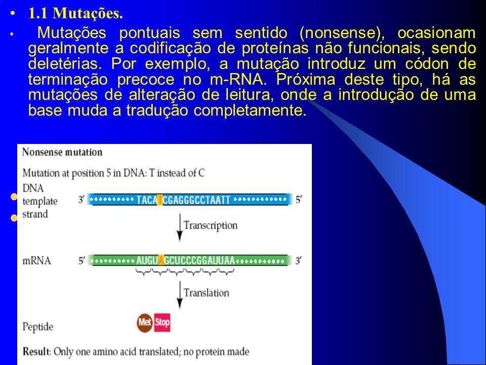 1.1 Mutações. Mutações pontuais sem sentido (nonsense), ocasionam geralmente a codificação de proteínas não funcionais, sendo deletérias. Por exemplo,