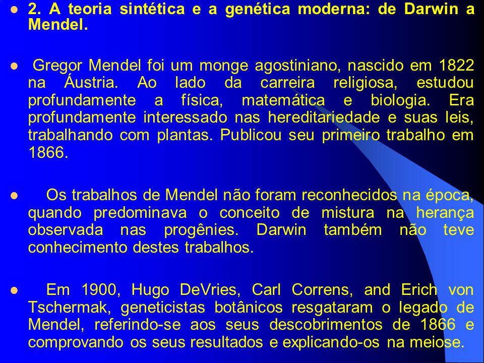 2. A teoria sintética e a genética moderna: de Darwin a Mendel. Gregor Mendel foi um monge agostiniano, nascido em 1822 na Áustria. Ao lado da carreir