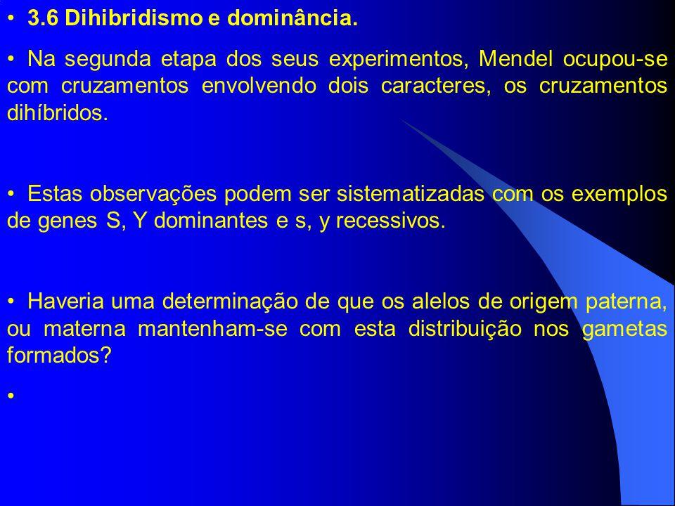 3.6 Dihibridismo e dominância. Na segunda etapa dos seus experimentos, Mendel ocupou-se com cruzamentos envolvendo dois caracteres, os cruzamentos dih