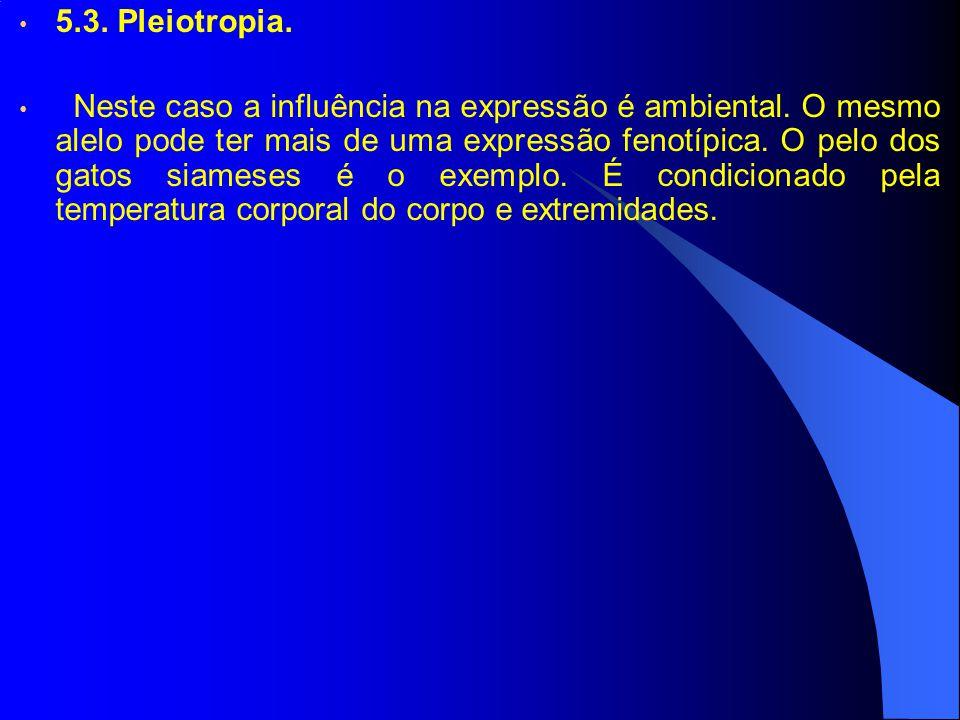 5.3. Pleiotropia. Neste caso a influência na expressão é ambiental. O mesmo alelo pode ter mais de uma expressão fenotípica. O pelo dos gatos siameses