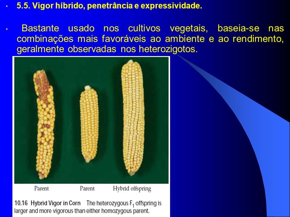 5.5. Vigor híbrido, penetrância e expressividade. Bastante usado nos cultivos vegetais, baseia-se nas combinações mais favoráveis ao ambiente e ao ren